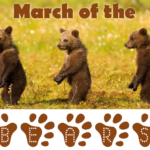 PSA: March of the Bears